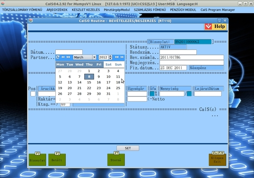 Make A Form From Database Definition See M Global CaIS Generated Via CaISFE Editor Utility